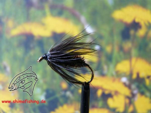 """Nassfliege """" Black Peacock Spider """""""