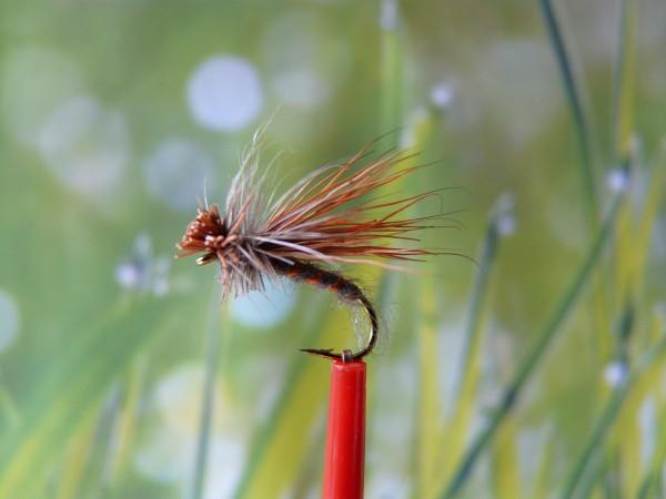 """Trockenfliege """" Elk Brown Natural """""""