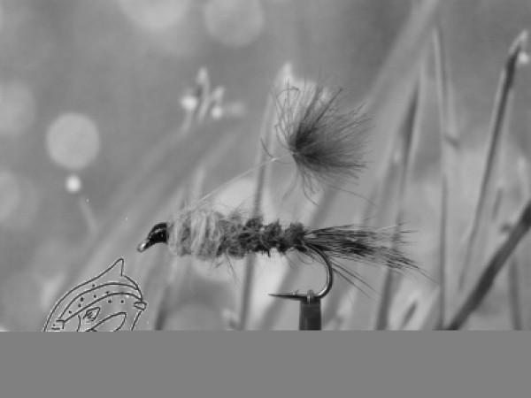 "Nymphe "" Parasol Hares Ear"""