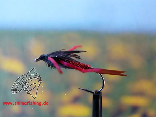 """Nymphe """" Copper King Red """""""